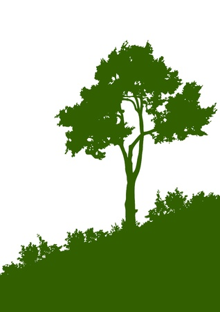 Green silhouette of a tree on the white background