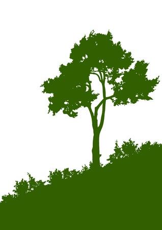 fa: Zöld sziluettje egy fa a fehér háttér