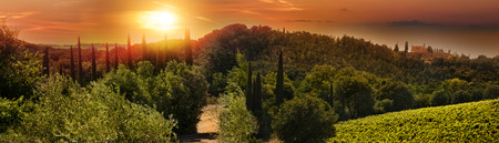 Tuscany landscape panorama at sunrise