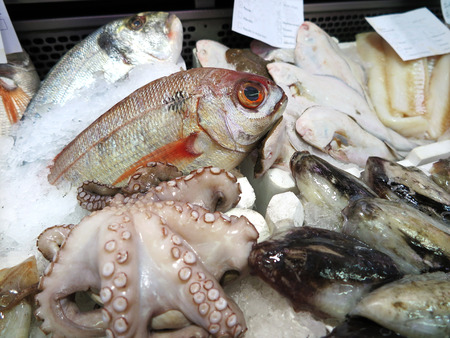 Various sea bream and seafood on ice