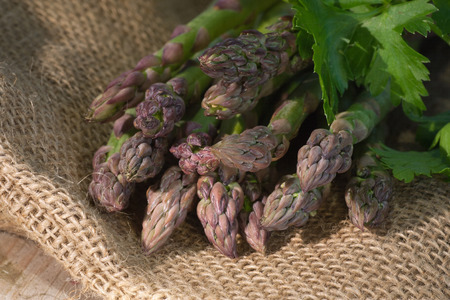 gourmet kitchen: Asparagus on rustic wooden background