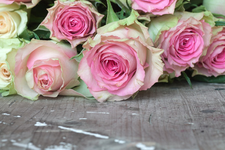 Pink and yellow roses for valentins or mothers day