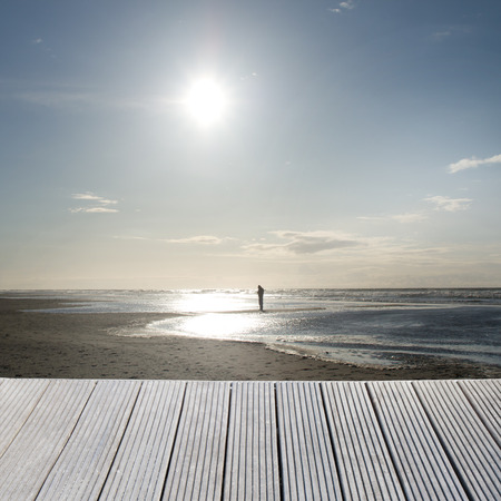 holz: Landscape of a wooden jetty overlooking the sea with a sunny background