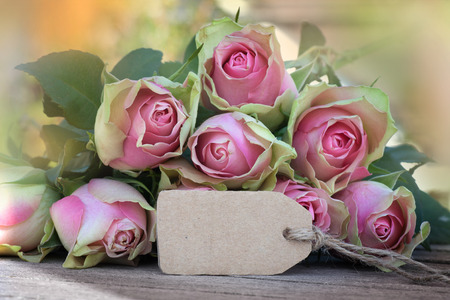 Mothers day card with pink roses