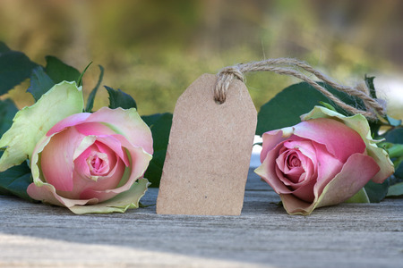 etikett: Mothers day card with pink roses