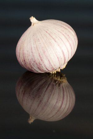 Garlic before glossy dark blue background