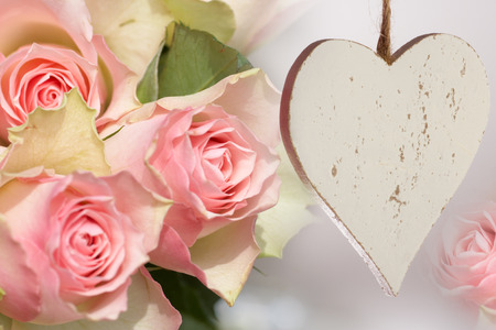pflanze: Beautiful pink roses bouquet