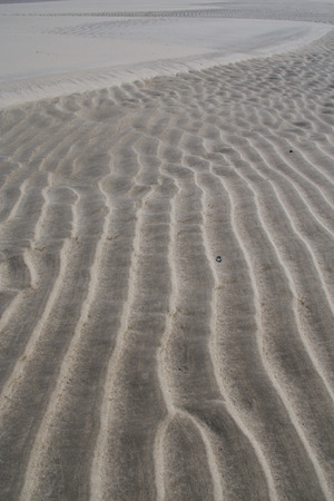 ripple effect: Rippled sand beach at sunset, texture