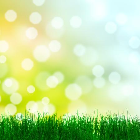 Spring background avec de l'herbe Banque d'images - 43572926