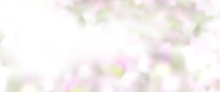 colores pastel: Resumen de fondo en colores pastel de bodas Foto de archivo