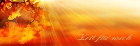 case sheet: Autumn Leaves Background in orange and gold tones with sunbeams and german text