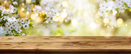 Spring background with white blossoms and sunbeams in front of a wooden table Stock Photo