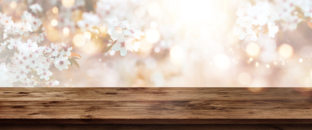 Tender cherry blossoms backgroundv in spring with sun and bokeh in front of an empty wooden table for a concept