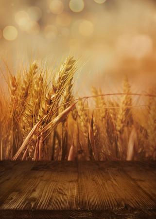 Bokeh achtergrond met cornfield in de herfst en lege houten tafel voor een decoratie Stockfoto