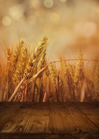 Bokeh background with cornfield in autumn and empty wooden table for a decoration
