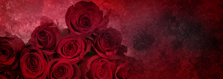 Abstract dark red background with bouquet of noble red roses for valentin day
