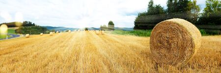 Scenery with harvested grain field and straw bales in late summer Stock fotó