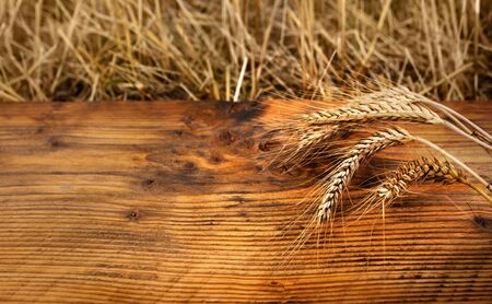 Golden ears of wheat on rustic wood for a decoration