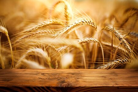 Golden ears of wheat in a field with old rustic wooden table for a decoration Stock fotó