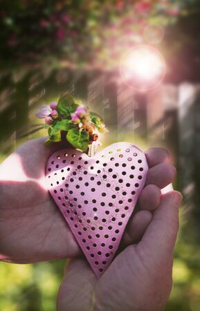 Hands holding a pink heart with fresh spring flowers in front of an old sunny wooden fence with short depth of focus. Symbolic vertical background for charity and cohesion. Space for text.