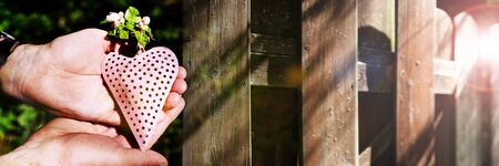 Hands holding a pink heart with fresh spring flowers in front of an old sunny wooden fence with short depth of focus. Symbolic horizontal background for charity and cohesion. Space for text.