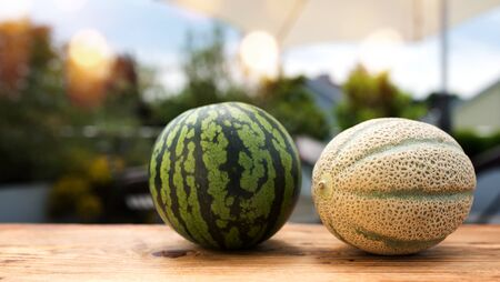 Fresh melons in summer on a wooden table. Whole fruits in front of a terrace with short depth of field and space for text.