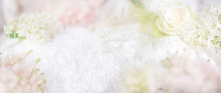 Abstract bright spring background. Blurred delicate blossom background. Horizontal close-up with short depth of field and space for text.