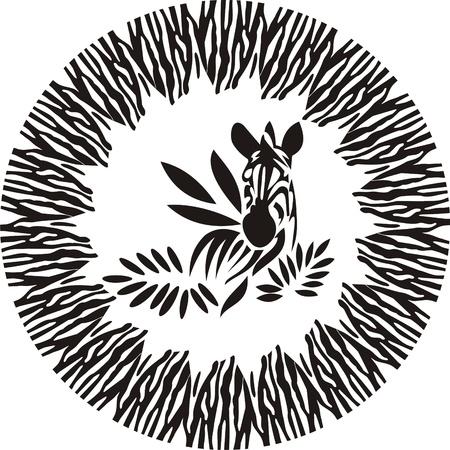 zebra of the leaves, animals frame