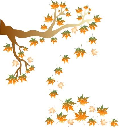 deteriorate: Beautiful autumn tree for your design