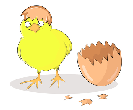 Vector illustration of a baby chick