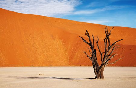 sossusvlei: Dead tree in Dead Vlei - Sossusvlei, Namib desert, Namibia. Stock Photo