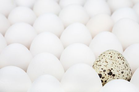 surpass: Unusual egg among ordinary another Stock Photo