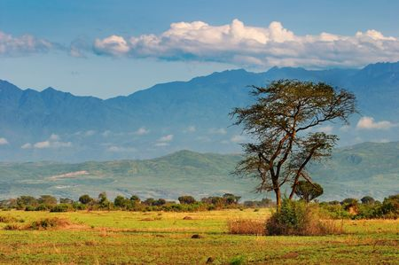 African savanna and  Rwenzori Mountains, Queen Elizabeth N.P., Uganda