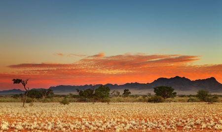 parch: Colorful sunset in Kalahari Desert, Namibia