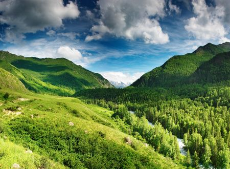 glades: Mountain landscape with forest and blue sky