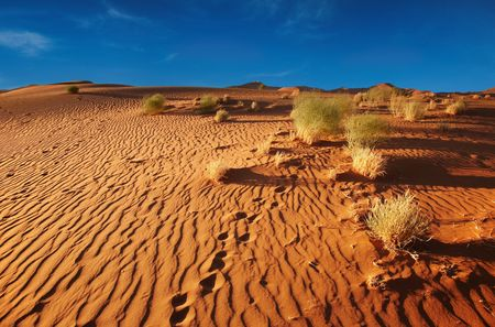 namib: Sand of Namib Desert, Sossusvlei, Namibia  Stock Photo