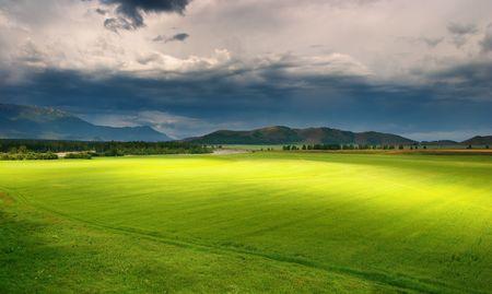 Paysage avec le champ de vert et de nuages de tempête