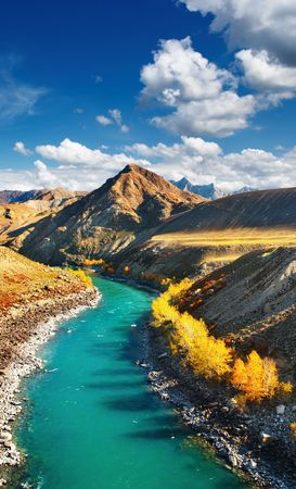 altai: Beautiful turquoise river in Altai mountains