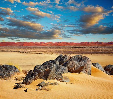parch: Namib Desert, dunes of Sossusvlei