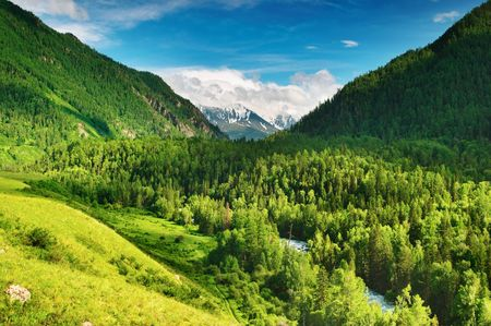 altai: Beautiful valley in Altai mountains