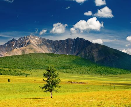 Beautiful landscape with mountains and blue sky Stock Photo - 2994452