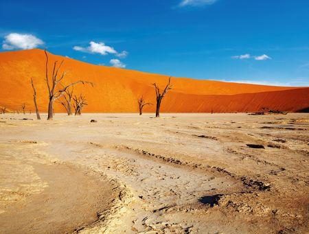 parch: Dead trees in Dead Vlei - Sossusvlei, Namib Desert, Namibia Stock Photo