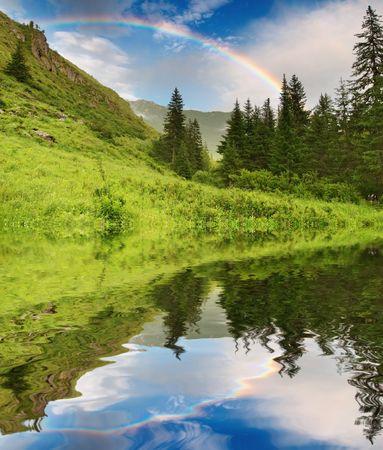 Landschap met bos en regenboog Stockfoto