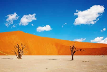 remains: Dunes of Namib Desert, Sossusvlei, Namibia  Stock Photo