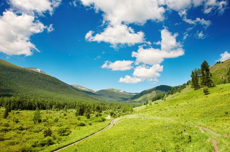Mountain landscape with forest and blue sky Stock Photo - 3470445