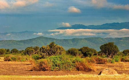 African savanna, Queen Elizabeth National Park, Uganda  photo