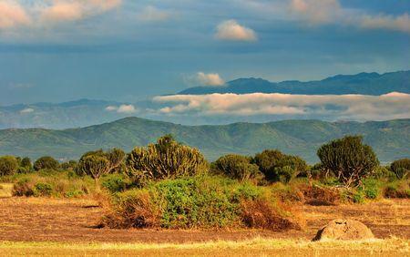 expanse: African savanna, Queen Elizabeth National Park, Uganda
