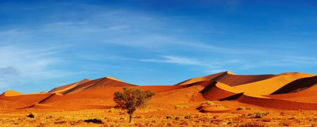 sossusvlei: Dunes of Namib Desert at sunset, Sossusvlei, Namibia