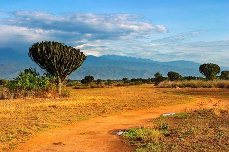 Afrikaanse savanne, Queen Elizabeth National Park, Oeganda