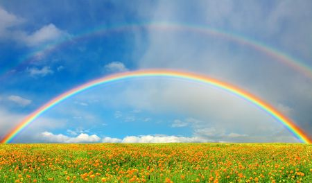 Landscape with blossoming field and rainbow Stock Photo